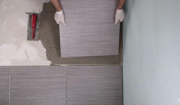 Crest-plata-adhesivo