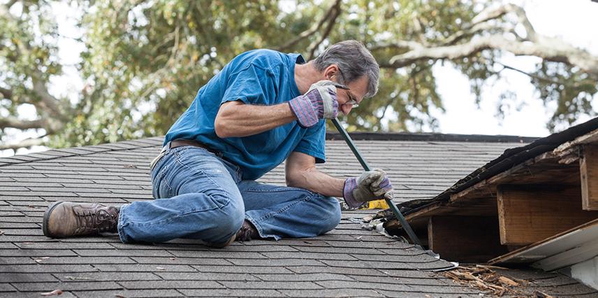 Barreta usos en techos
